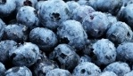 Bilberry – Health Benefits, Uses, Research, Preparation, Precautions